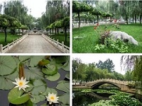 石家庄东华铁路学校花园式校园